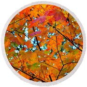 Fall Colors 2014-5 Round Beach Towel