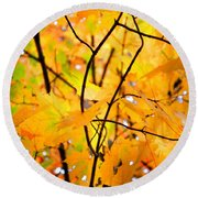 Fall Colors 2014-7 Round Beach Towel