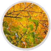 Fall Colors 2014-8 Round Beach Towel
