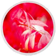 Fall Colors 6669 Round Beach Towel