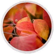 Fall Colors 6675 Round Beach Towel