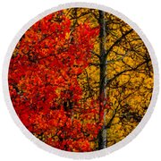 Fall Colors Dp Round Beach Towel