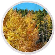 Fall Colors On The Colorado Aspen Trees Round Beach Towel