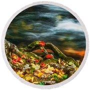 Fall Colors Stream Great Smoky Mountains Painted  Round Beach Towel