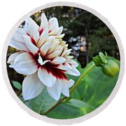 Fall Dahlia Round Beach Towel