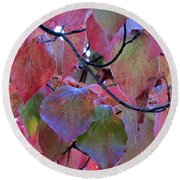Fall Dogwood Leaf Colors 2 Round Beach Towel