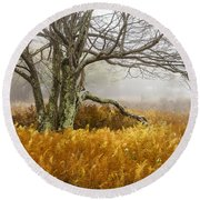 Fall Ferns And Fog Round Beach Towel