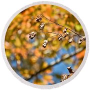 Fall Foliage Round Beach Towel