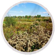 Fall Goldenrod Field Round Beach Towel