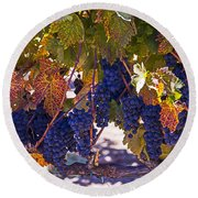 Fall Grape Harvest Round Beach Towel