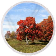 Fall In The Pastures Round Beach Towel