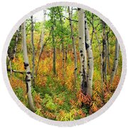 Fall In The Tetons Round Beach Towel