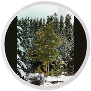 Fall Into Winter Round Beach Towel