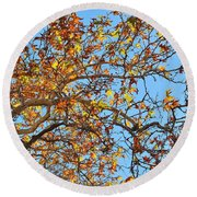 Fall Is Here Round Beach Towel
