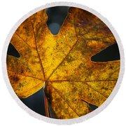 Fall Leaf Round Beach Towel