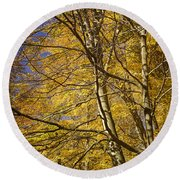Fall Leaves And Trees In West Michigan No171 Round Beach Towel