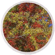 Fall Leaves In So Cal Round Beach Towel