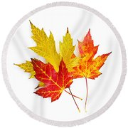 Fall Maple Leaves On White Round Beach Towel
