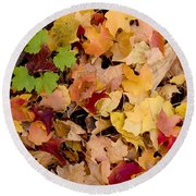 Fall Maples Round Beach Towel by Steven Ralser