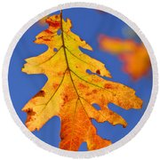 Fall Oak Leaf Round Beach Towel