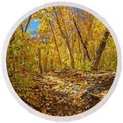 Fall On The Forest Floor Round Beach Towel