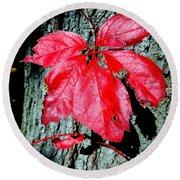 Fall Red Leaf Round Beach Towel