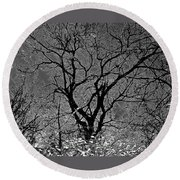 Fall Reflection Round Beach Towel