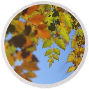 Fall Time Round Beach Towel