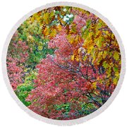 Fall Tree Leaves Round Beach Towel