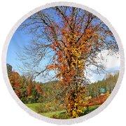 Fall Trees 5 Of Wnc Round Beach Towel