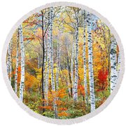 Fall Trees, Shinhodaka, Gifu, Japan Round Beach Towel