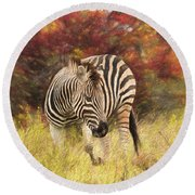 Fall Zebra Round Beach Towel