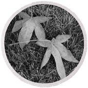 Fallen Autumn Leaves In The Grass During Morning Frost Round Beach Towel