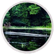 Fallen Log In A Lake Round Beach Towel by Bill Cannon