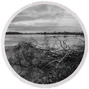 Fallen Trees At The Lake Round Beach Towel