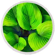 Falling Into Green Round Beach Towel