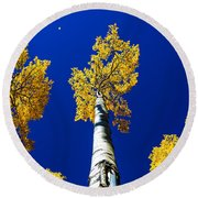 Falling Leaf Round Beach Towel
