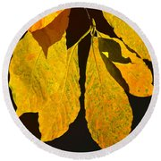 Fall's Purest Gold Round Beach Towel