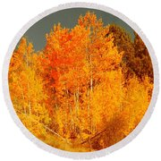 Falls Trees Round Beach Towel