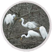Family Affair Egrets Louisiana Round Beach Towel