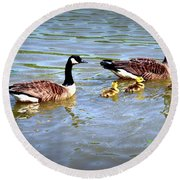 Family Of Geese Out For A Swim Round Beach Towel