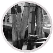 Family Of Pilings Round Beach Towel