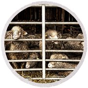 Family Portrait Behind Bars Round Beach Towel