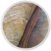 Fan Palm Forced Into A Slant By Rock In Andreas Canyon-ca Round Beach Towel