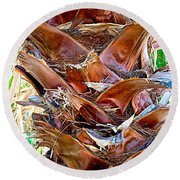 Fan Palm Trunk In Andreas Canyon In Indian Canyons-ca Round Beach Towel