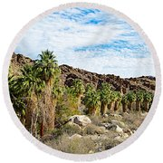 Fan Palms Line The Creek In Andreas Canyon In Indian Canyons-ca Round Beach Towel
