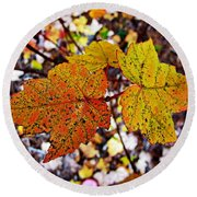 Fancy Fall Leaves Round Beach Towel