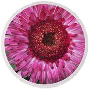 Fancy Pink Daisy Round Beach Towel