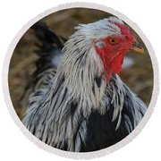 Fancy Rooster Round Beach Towel