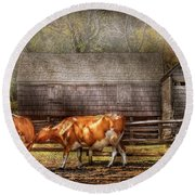 Farm - Cow - A Couple Of Cows Round Beach Towel by Mike Savad